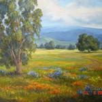 Norma Webb, Oils